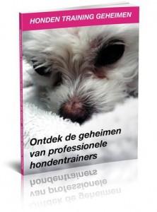 Honden-training-geheimen-3d-222x300